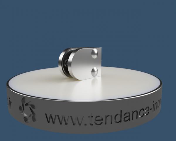pince-a-verre-inox-40x50